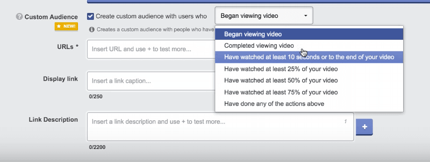video-engagement-custom-audience-options