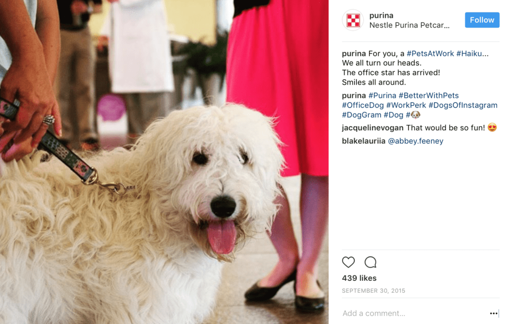 Instagram ads strategy - hashtags