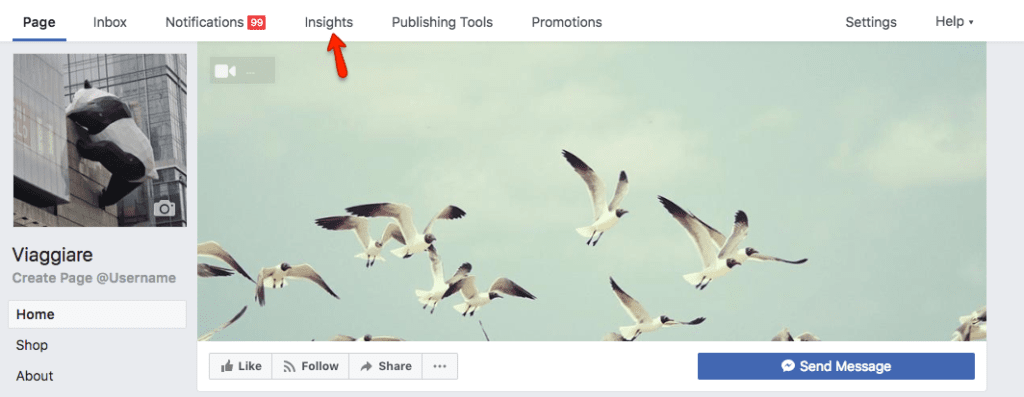 facebook i9nsights