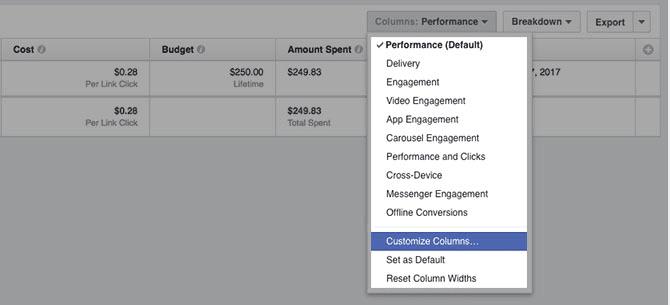 Customizing columns option