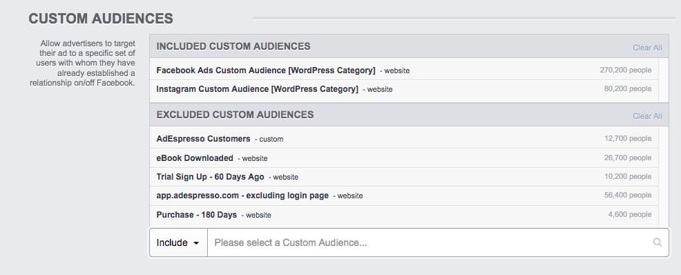 Custom lead magnet audience filtering in Facebook