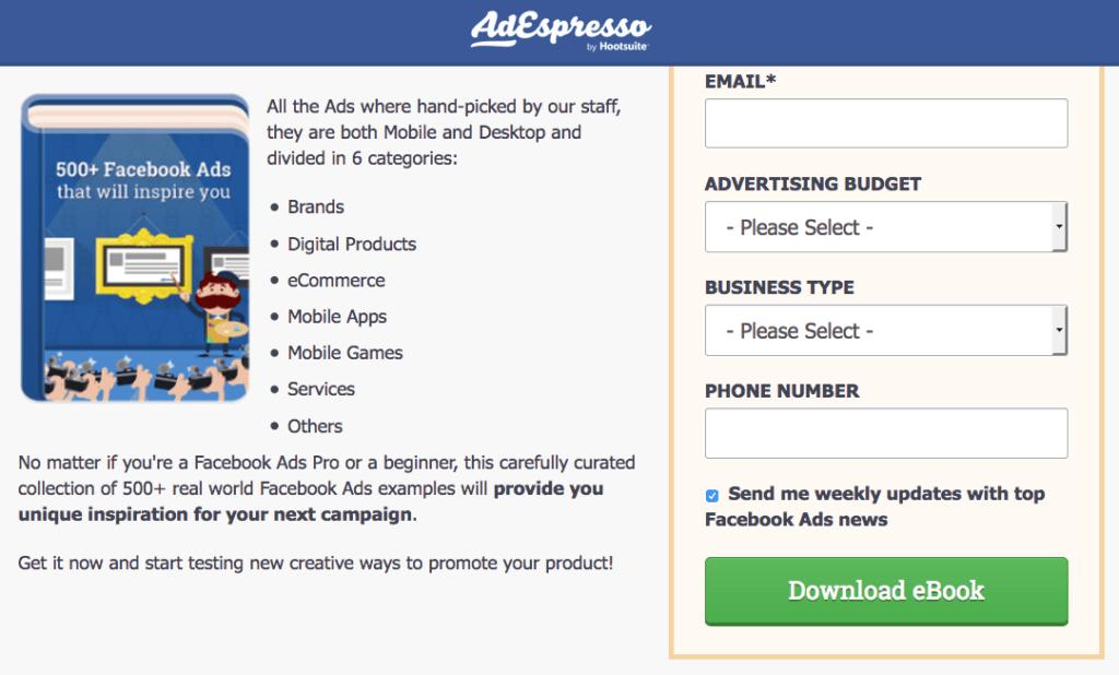 500+ Facebook Ads lead magnet landing page