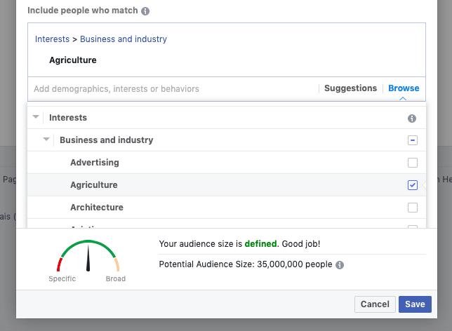 Facebook like audience interest targeting