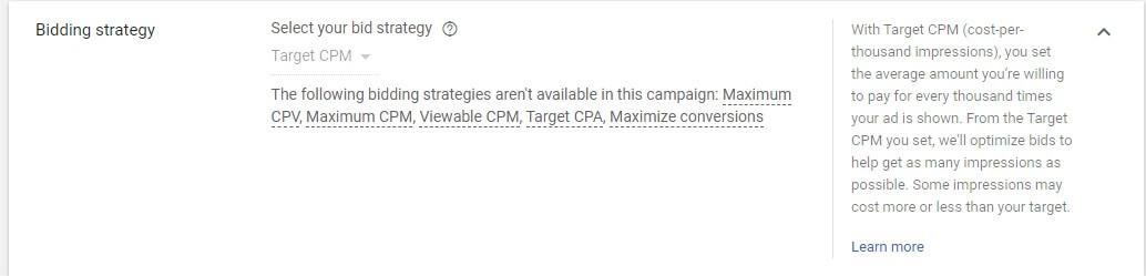YouTube Ads bidding strategy