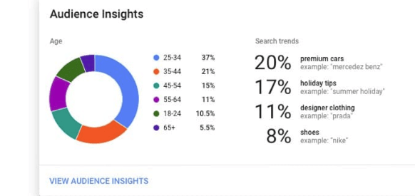 Circle graph showing audience insights in Google Ad Manager