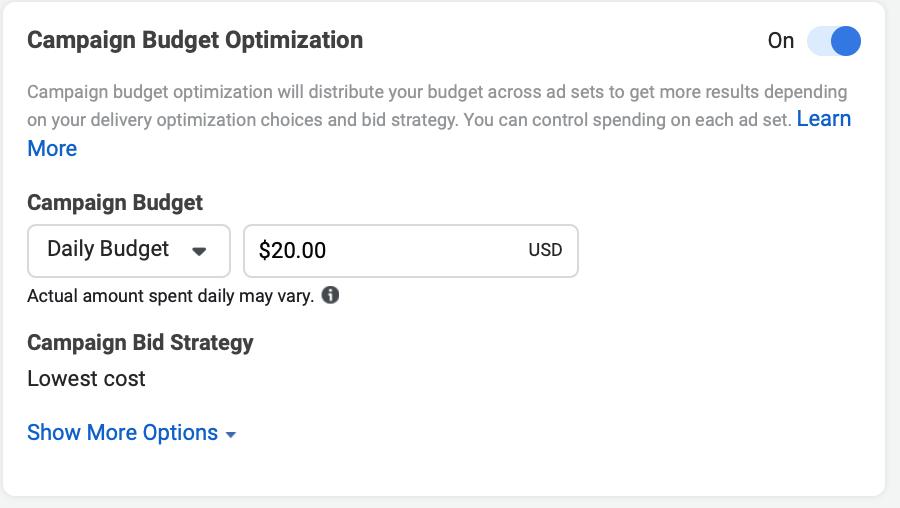 Facebook campaign budget optimization option