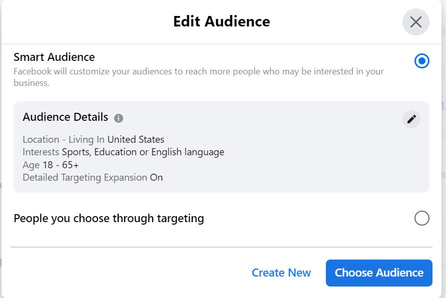 Facebook Automated Ad Setup 17