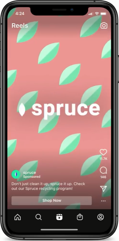 Instagram Reels ad for Spruce