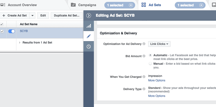 Facebook ad set optimization and delivery section