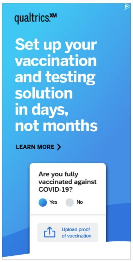 Screenshot of Microsoft Advertising vertical banner ad